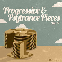 Progressive Trance & Psy Trance Pieces, Vol. 12 — Nok