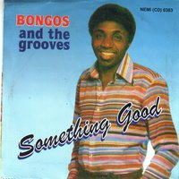 Something Good — Bongos And The Grooves