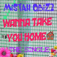 Wanna Take You Home — Mistah Qbiz2