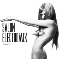Salon Electromix, Vol. 3 — сборник
