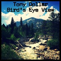 Bird's Eye View — Tony Dollar