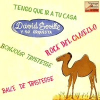 Vintage Dance Orchestras No. 189 - EP: Camel Rock — David Seville And His Orchestra