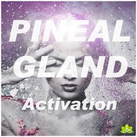 Pineal Gland Activation — Spiritual Moment