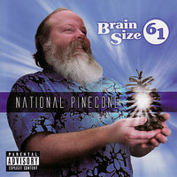 National Pinecone — Brain Size 61