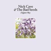 Nature Boy — Nick Cave & The Bad Seeds