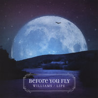 Before You Fly — Steve Williams & Danny Lipe
