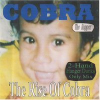 The Rise of Cobra — cobra the rapper