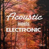 Acoustic Meets Electronic, Vol. 2 — сборник