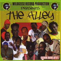 The Alley — Wildgeese Record Production