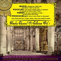 Timeless Classical Collection - Choral Edition — Orchestre National de la Radiodiffusion Française, Rca Victor Orchestra, Studio Orchestra, Singgemeinschaft Rudolf Lamy, Solisten-vereinigung der Backwocke Ansbach