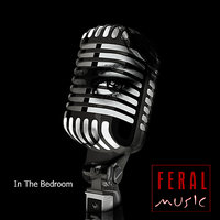 In The Bedroom — Feral Music