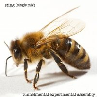 Sting — Tunnelmental Experimental Assembly