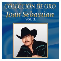 Coleccion De Oro Vol.2 — Joan Sebastian