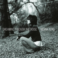 Dreaming Through The Noise — Vienna Teng