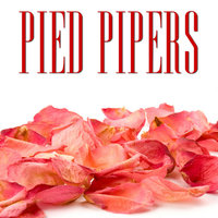 Classic Years of Pied Pipers — The Pied Pipers