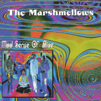 Mad Sense Of Alice — The Marshmellows
