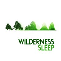 Wilderness Sleep — Nature Sounds Sleep