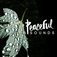 Peaceful Sounds — Soothing Sounds