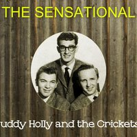 The Sensational Buddy Holly and the Crickets — Buddy Holly & The Crickets