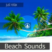 Beach Sounds — Tracks of Nature