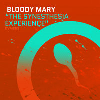 The Synesthesia Experience — Bloody Mary