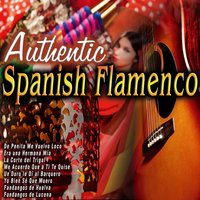Autentic Spanish Flamenco — сборник