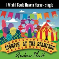 I Wish I Could Have a Horse — Andrew Plait
