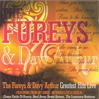 Greatest Hits Live — The Fureys & Davey Arthur