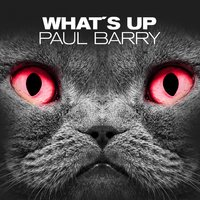 WHAT'S UP — Paul Barry