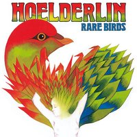 Rare Birds — Hoelderlin