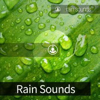 Rain Sounds — Tracks of Nature