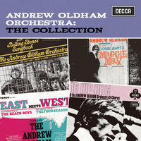 The Collection — Andrew Oldham Orchestra