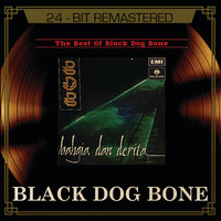 The Best Of Black Dog Bone — Black Dog Bone