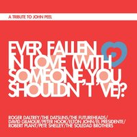Ever Fallen in Love (With Someone You Shouldn't 've)? — Elton John, David Gilmour, Robert Plant, The Futureheads, Roger Daltrey, Peter Hook