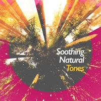 Soothing Natural Tones — Soothing Sounds