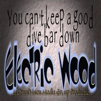 You Can't Keep a Good Dive Bar Down — Electric Wood, Joe's Bar