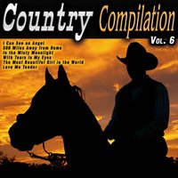 Country Compilation Vol. 6 — сборник