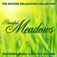 The Nature Relaxation Collection - Peaceful Meadows / Soothing Music and Nature Sounds — Sugo Music Artists