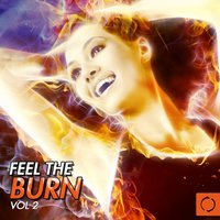 Feel the Burn, Vol. 2 — сборник