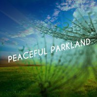 Peaceful Parkland — Sounds of Nature!