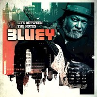 Life Between the Notes — Bluey