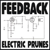 Feedback — The Electric Prunes