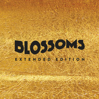 Blossoms — Blossoms