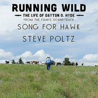 Song For Hawk (From Running Wild: The Life Of Dayton O. Hyde) — Steve Poltz