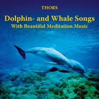 Dolphin- and Whale Songs with Beautiful Meditation Music — Thors