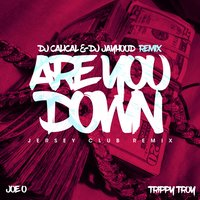 Are You Down — DJ Jayhood, Trippy Troy, DJ CaliCal, Joe O