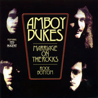 Marriage On The Rocks / Rock Bottom — Ted Nugent, Amboy Dukes