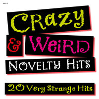 Crazy & Weird Novelty Hits - 20 Very Strange Hits — Paul Evans