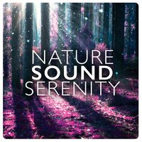 Nature Sound Serenity — Natural Sounds, Nature Sound Collection, Natural Sounds|Nature Sound Collection