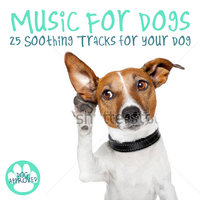 Music for Dogs - 25 Soothing Tracks for Your Dog — L'Orchestra Numerique
